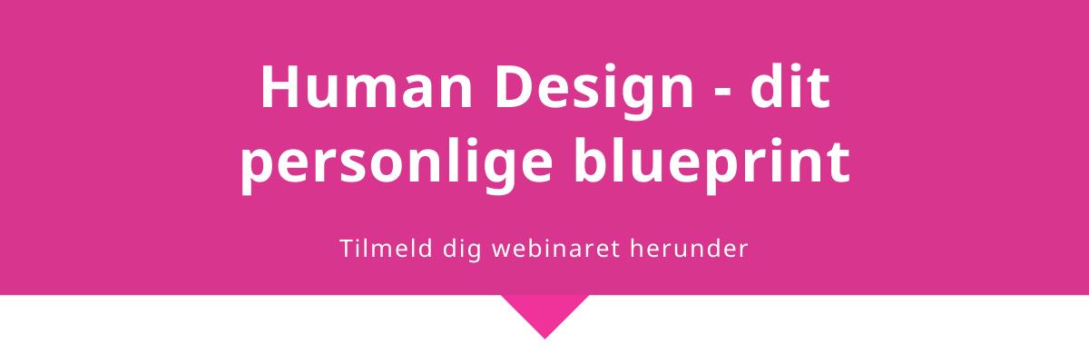 Human Design stine vestergaard webinar